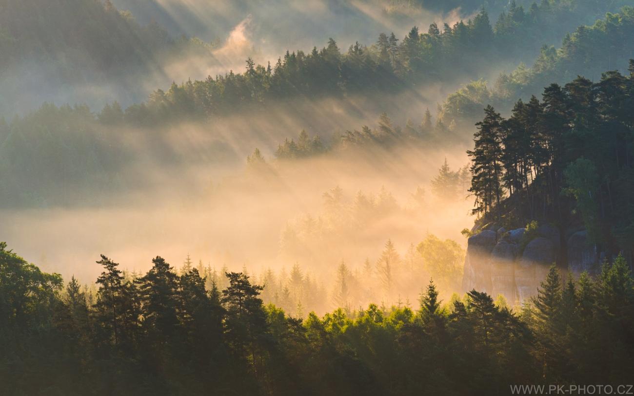 ranní paprsky kreslí v mlze