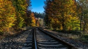 podzim na trati